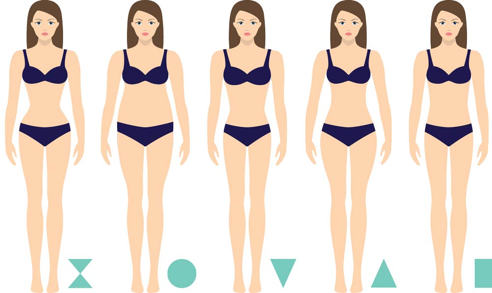 Women's body shapes diagram